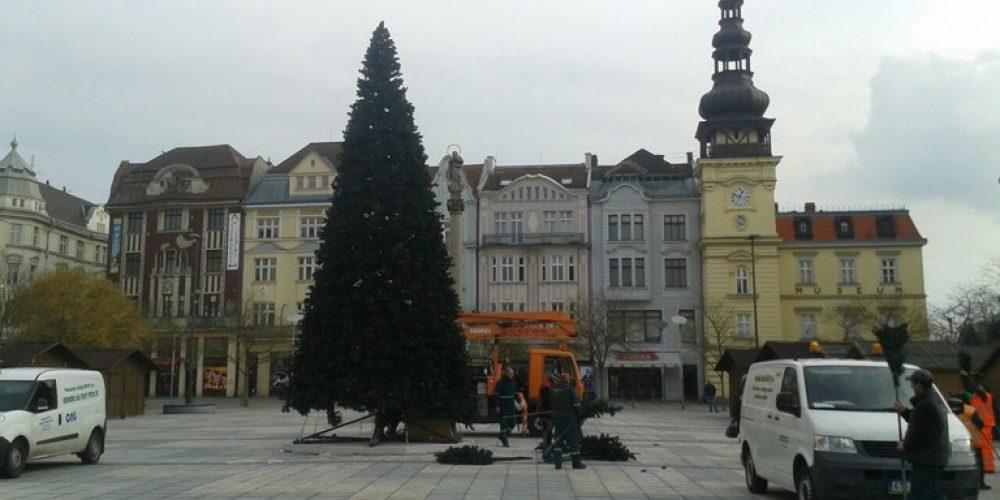 Destimetrový umělohmotný vánoční strom již stojí na náměstí