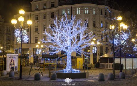 Ledový strom